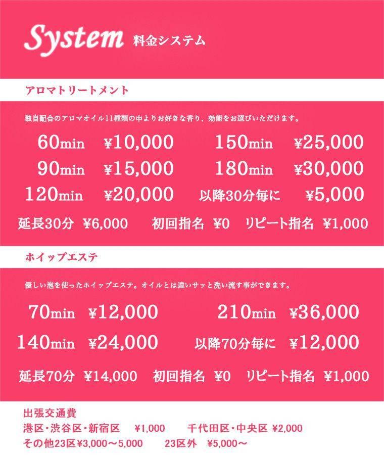 A-TYPEの見本【TEST】料金表